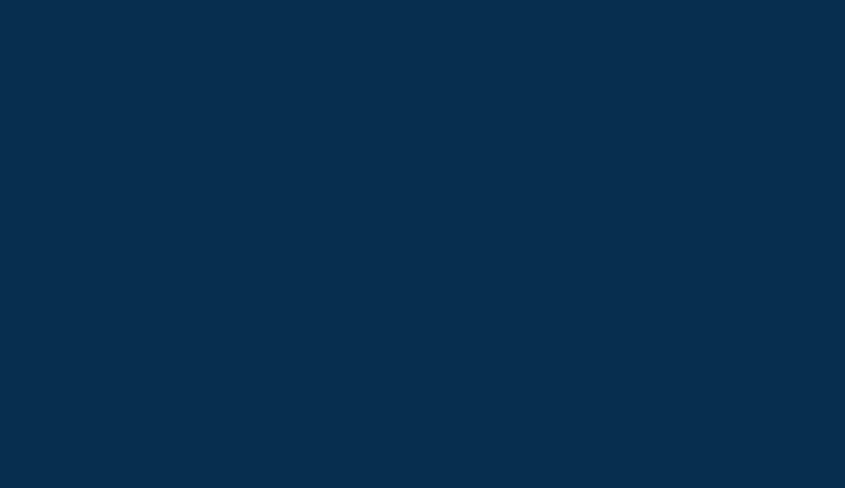 Bartz Viviano